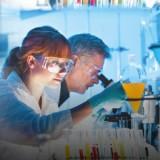 Epatite C: nuove conferme di efficacia per elbasvir/grazoprevir
