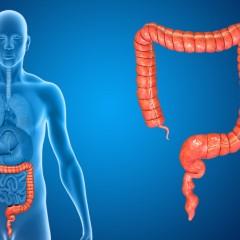 Tumore del colon-retto e benefici dai grassi omega-3