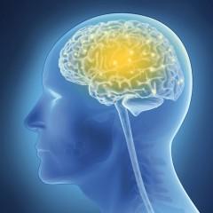 Stimolando il cervello si spegne la bulimia