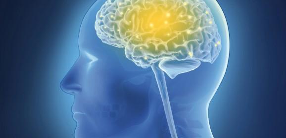 Settimana mondiale del cervello 11-17 marzo 2019