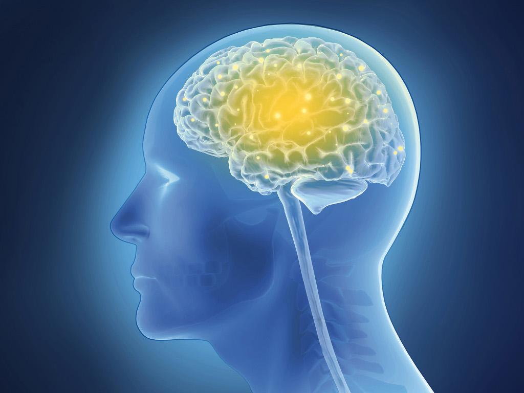 salute del cervello e perdita di peso