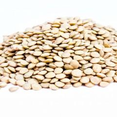 Proteine vegetali e longevità