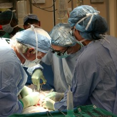 """""""Diamo il meglio di noi"""", campagna per la donazione d'organi"""