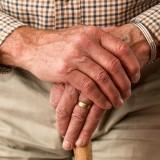 Flora intestinale possibile complice del morbo di Parkinson